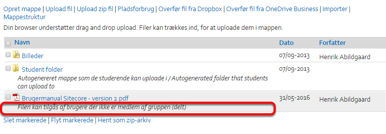 Af fildelingen fremgår nu at filen Filen kan tilgås af brugere der ikke er medlem af gruppen (delt):