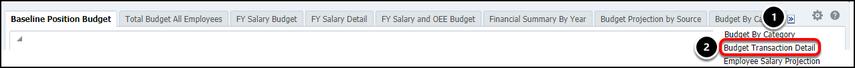 Budget Transaction Detail tab