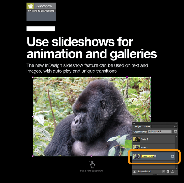 Add new states using the Object States panel for each image you want in your slideshow and follow the steps above to fill them with images.