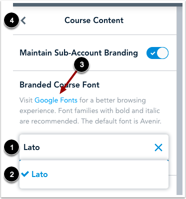 Customize Course Font