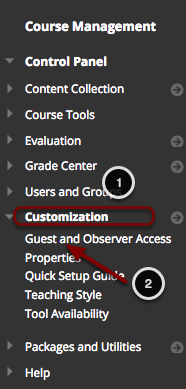 Image of the control panel with the following items: 1.Go to the Control Panel and click on Customization.2.Select Guest and Observer Access