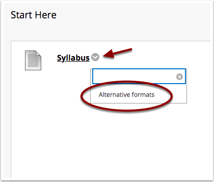 student view of drop down menu option for alternative formats