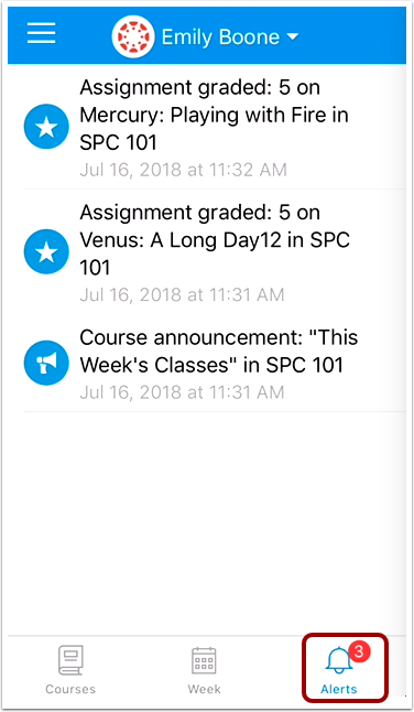 View Alerts