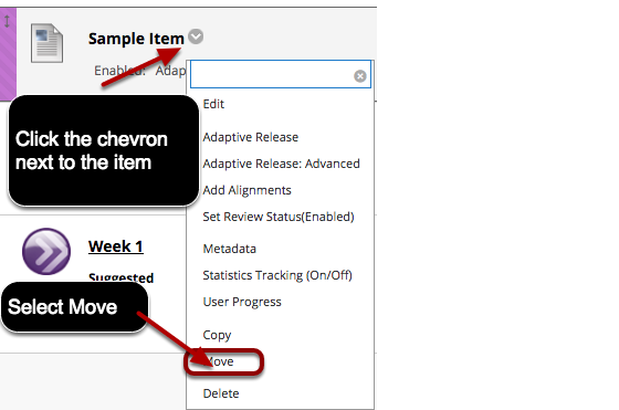 Image of the contextual menu that appears when users click the chevron button next to the item they want to edit, with Move in the menu highlighted.
