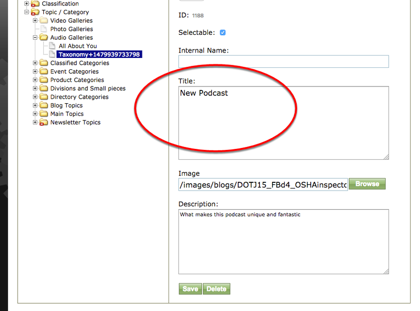 Click on the new Taxonomy and type your new topic or category under Internal Name and Title on the right.