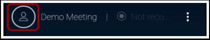 Open User/Chat Window