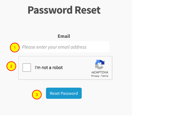 Use your account email and password to activate LiveCode