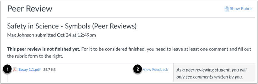 Ver revisión entre pares