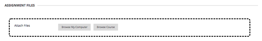 Image of Assignment Files with the Browse My Computer and Browse Course buttons.