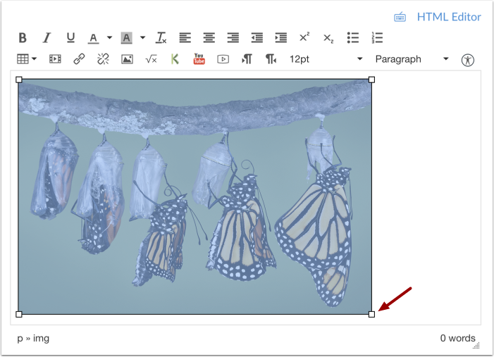Visuall Resize Image