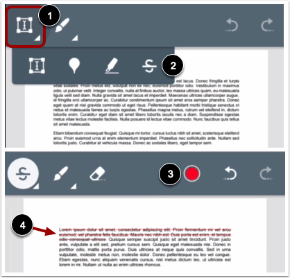 Add Strikeout Text Annotation