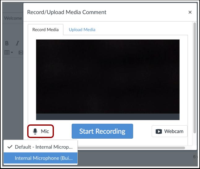 Select Audio Option