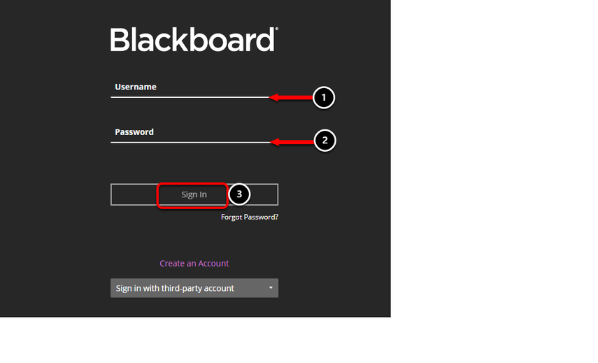Log In to Blackboard