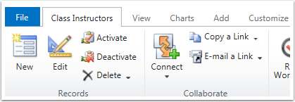 Click the New button in the ribbon tool bar for a blank class instructor form.
