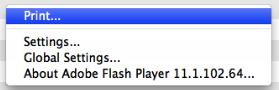 Adjusting Storage Capacity for Flash Player