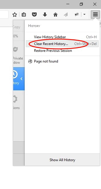 """Select """"Clear Recent History..."""""""