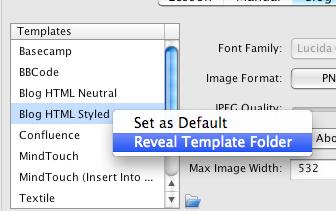 Review Template Folder