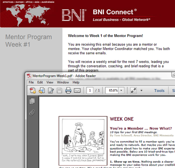 Each Week the Mentor and Mentee Will Receieve an Instructional Email and Attached Article