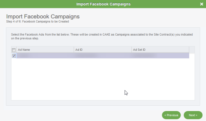 Facebook Lead Ads Campaign Importer: Step 4