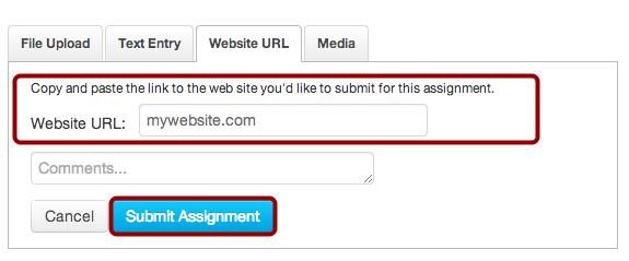 Submit Website URL