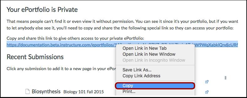 Copy ePortfolio Link