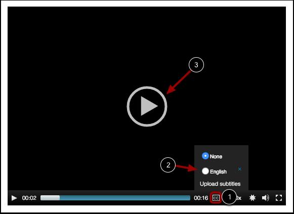 Select Subtitle Language