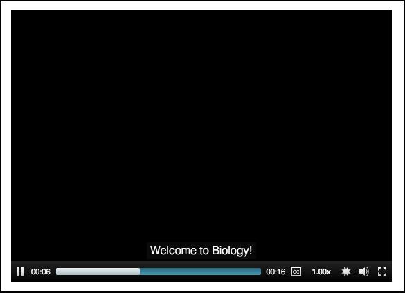 View Subtitles