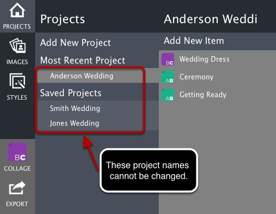 Overall Project Name
