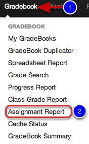 4. Assignment Report