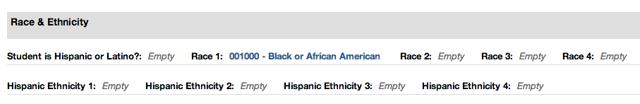 Racial Ethnic Code