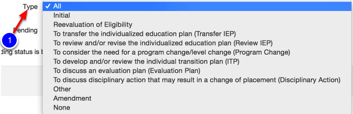 Optional Filter: Type of IEP