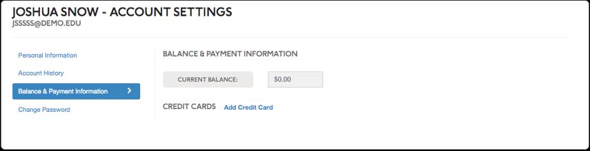 Balance & Payment Information:
