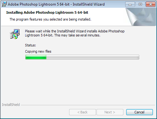 It will take a few minutes for the InstallShield Wizard to run