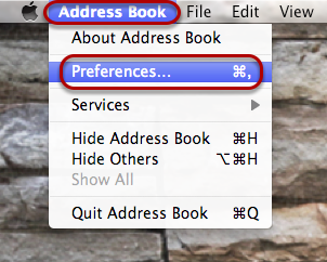 "Select ""Address Book"" in the top left-hand corner, and select ""Preferences""."