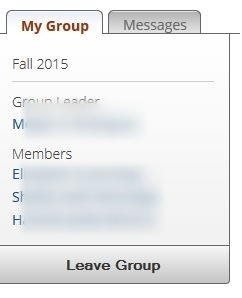 How does the group know who the leader is?