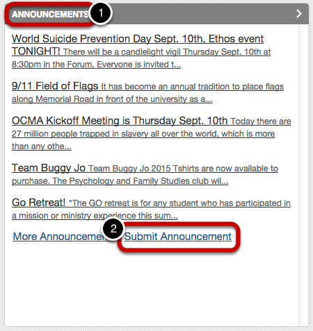 "In the top left box labeled ""Announcements"", click on the blue link titled ""Submit Announcement""."