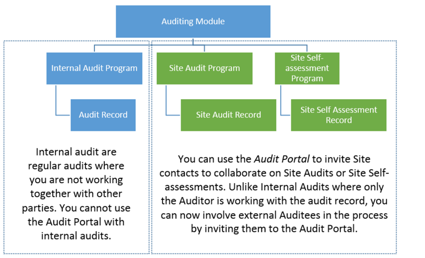 What are the different Audit Program types used for?