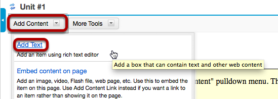 Click Add Content, then Add Text.