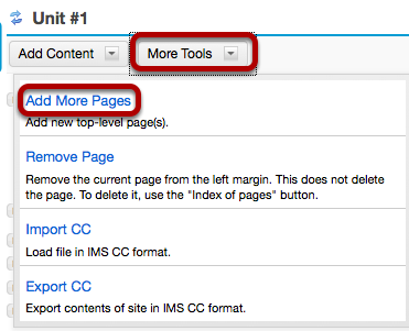 Or, on an existing top-level page, click More Tools, then Add More Pages.