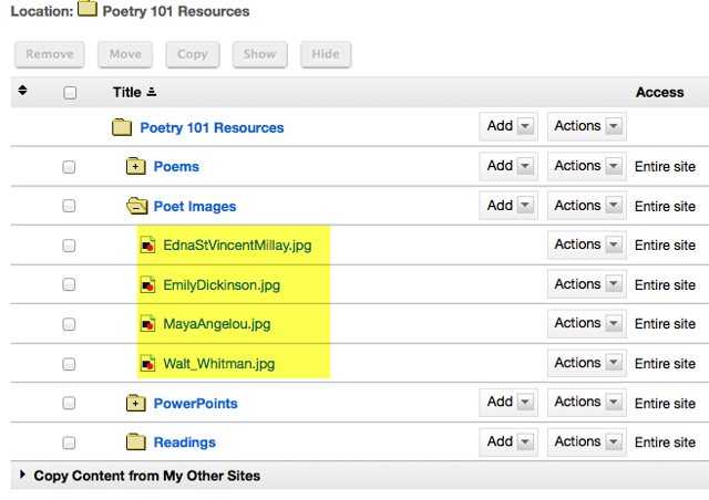 View files in Resources.