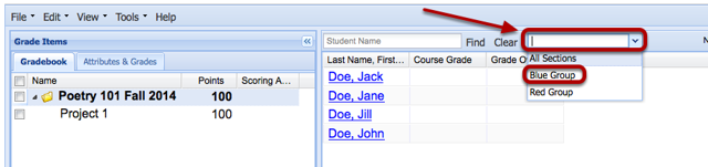 Use the All Sections drop-down menu to select a group/section.