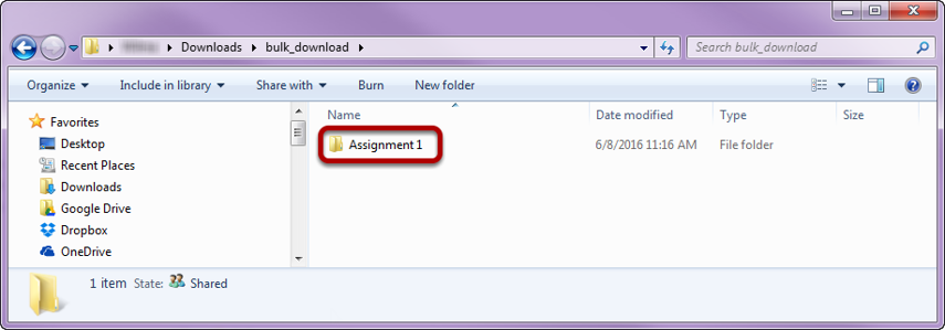 View assignment folder.