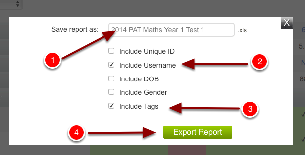 Step 5: Naming the test and selecting export options