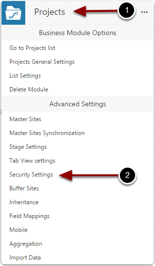 Open business module security settings