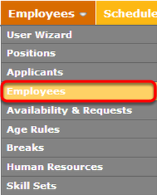 "Navigate to the ""Employees"" page."