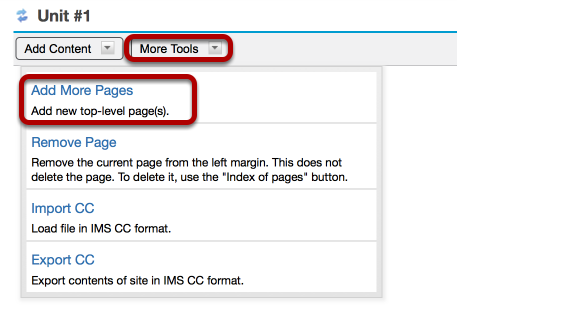 To add additional top-level Lessons pages, click More Pages Add More Pages. (Optional)