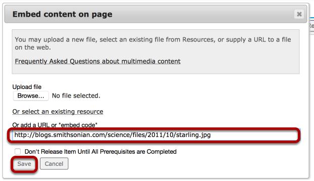 Enter (or paste) a URL, then click Save.