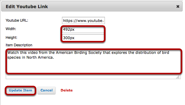 Add a description and/or adjust the video pixel size, then click Update Item.