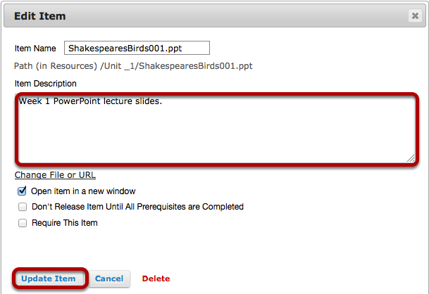 Add a description for the uploaded file, then click Update Item.