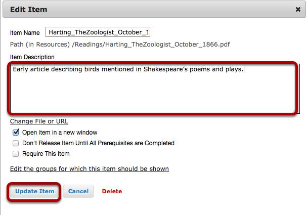 Add a description, then click Update Item.